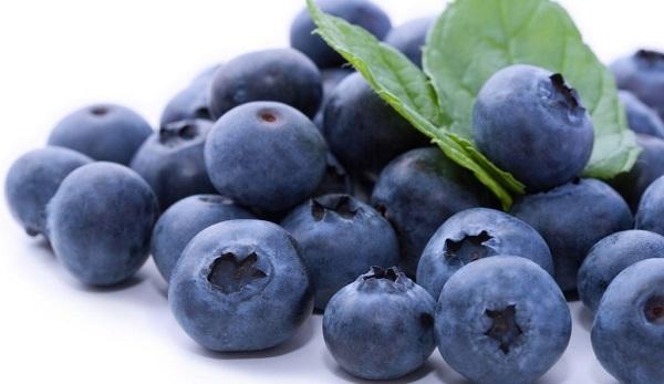 Польза ягод черники для организма и противопоказания