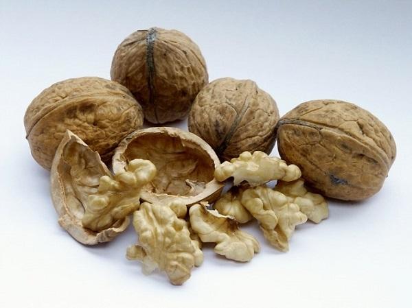 Брусника и орехи