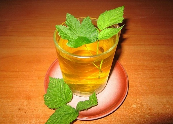 Напиток с листьями