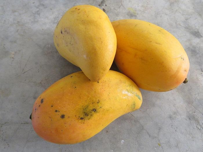 Виды хранения манго