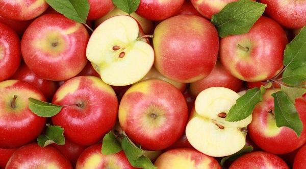 Яблоко это ягода