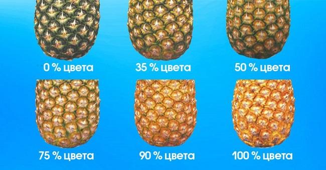 Как выбрать ананас 2