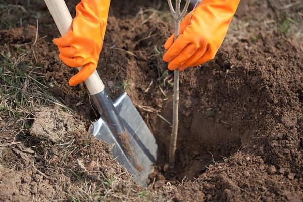 Не стоит копать глубоко