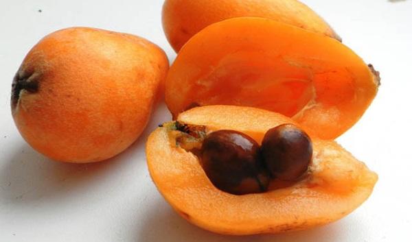 В плодах